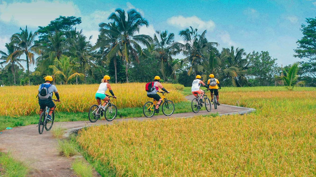 Aktivitas Cycling di Bali